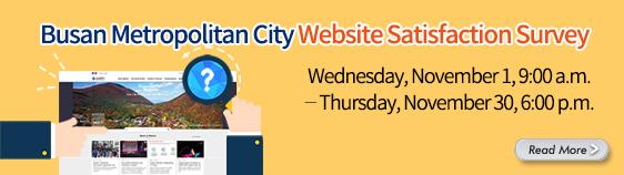 Busan Metropolitan City Web Site Satisfaction Survey