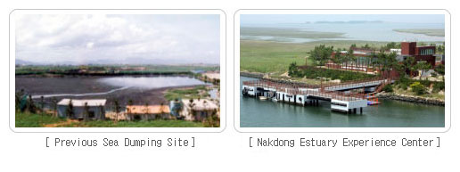 The Nakdong Estuary, Past and Present photo